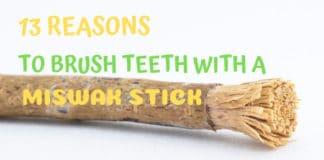 Brush Teeth Miswak Stick