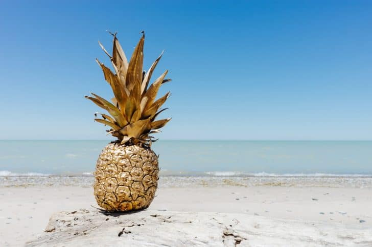 pineapple-dessert-appetizer-fruit