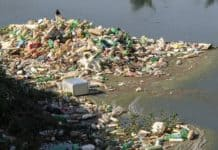 trash-river-pines-rubble-pollution
