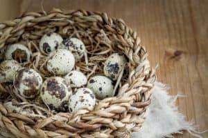 basket-quail-eggs