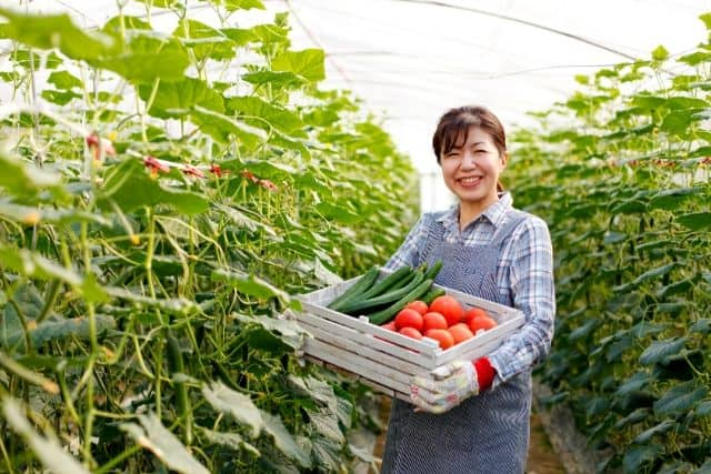 urban-agriculture-farming