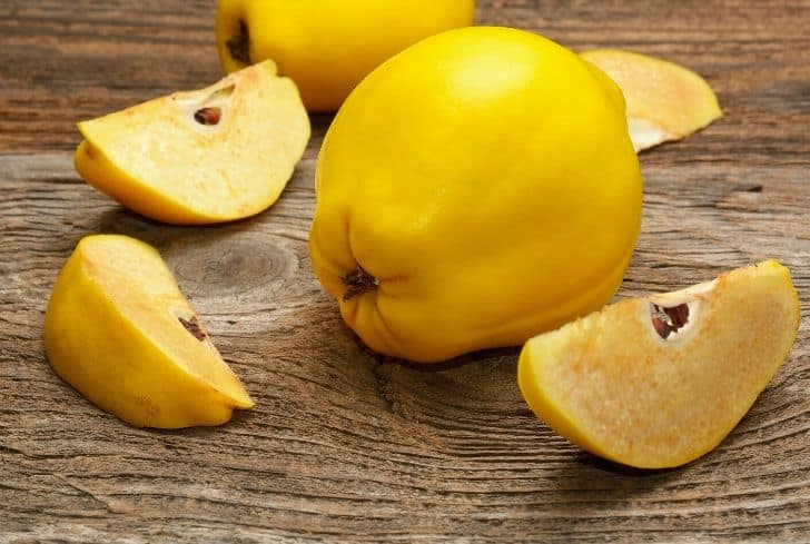 quince-fruit