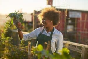 women-doing-home-gardening