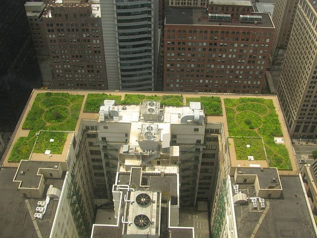 Chicago_City_Hall_Green_Roof