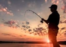 Is Fishing Sustainable?