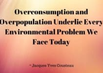 125 Great Quotes About Overpopulation and Population Growth