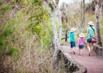Challenges, Solutions and Future Trends in Ecotourism