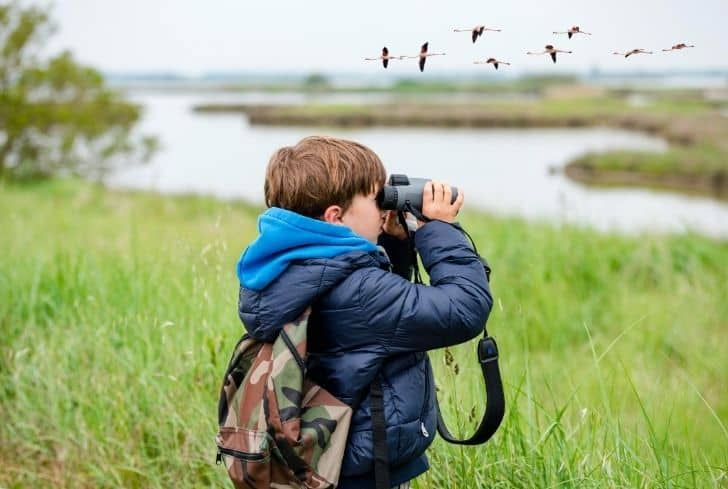 child-watch-birds-through-lens