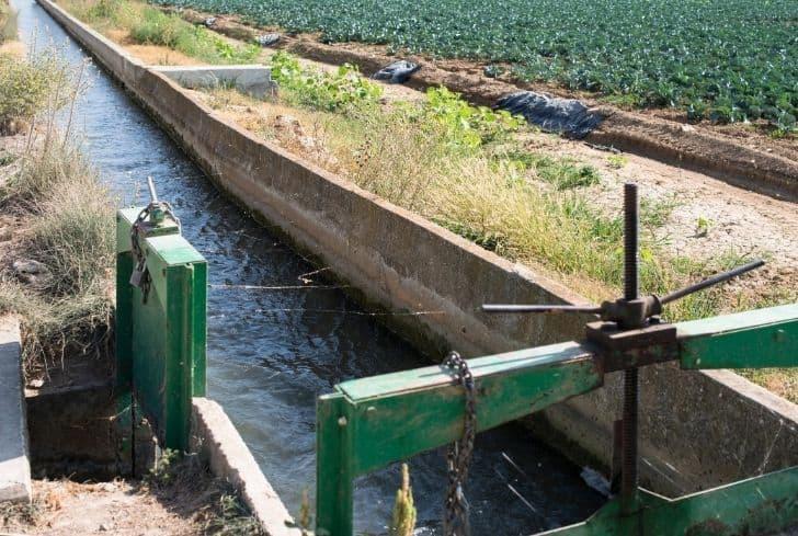 sewage-water-irrigation