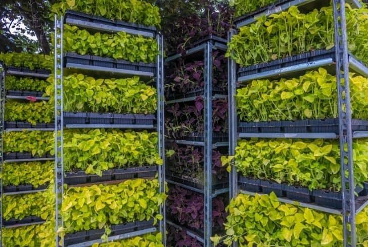 vertical-garden-stack