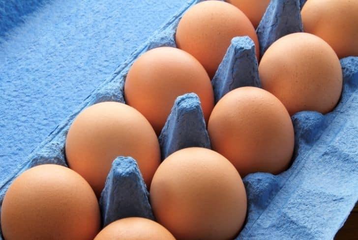 blue-egg-cartons
