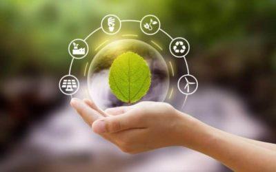 30+ Wondrous Ways to Keep the Environment Clean