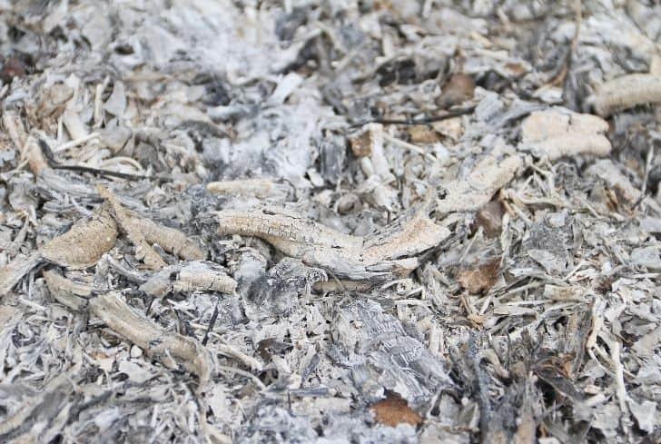 wood-ash