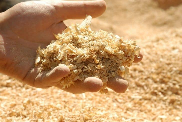 handful-of-sawdust