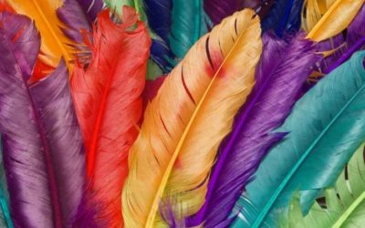 Can You Compost Feathers? (And Are They Biodegradable?)