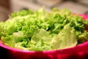 fresh-lettuce