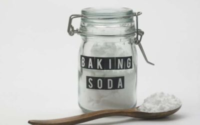 Can You Put Baking Soda in the Compost?