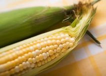 Can You Compost Corn Cobs? (And Corn Husks?)