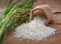 Can You Compost Rice? (And Uncooked Rice?)